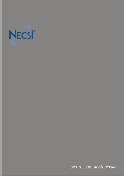 Presentazione NECSI