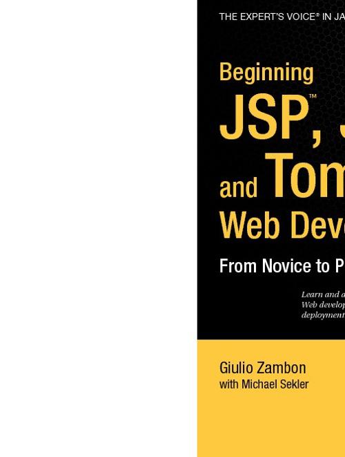 Beginning JSP