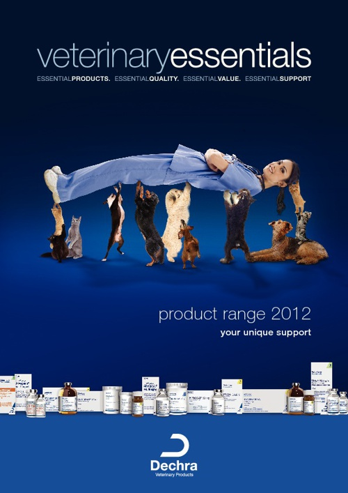 Dechra Veterinary Essentials Brochure