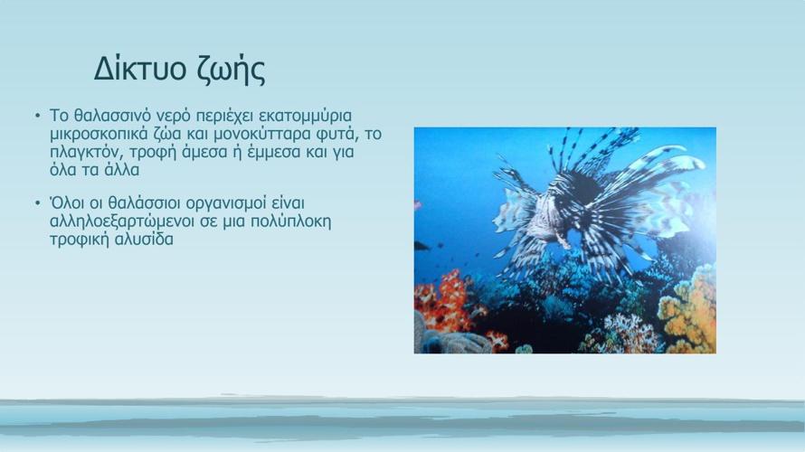 Το βιβλίο της θάλασσας 2