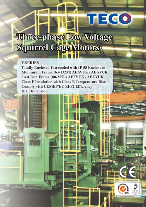 Catalogues Motor TECO