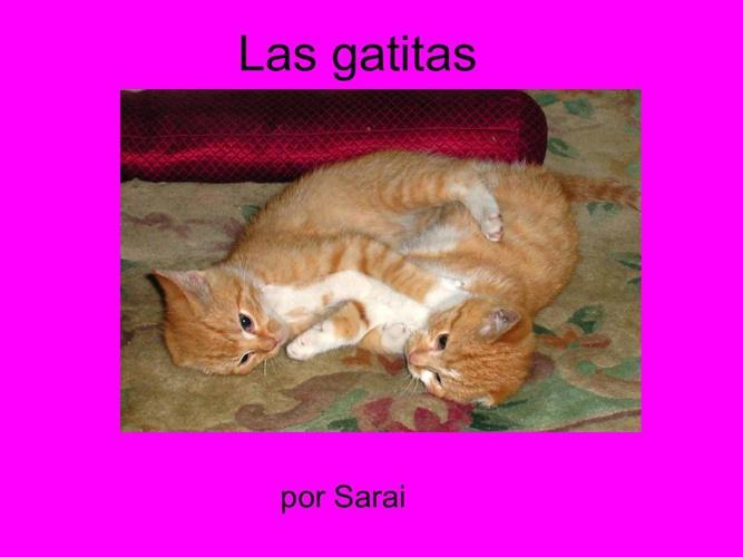 Sarai Gatitas