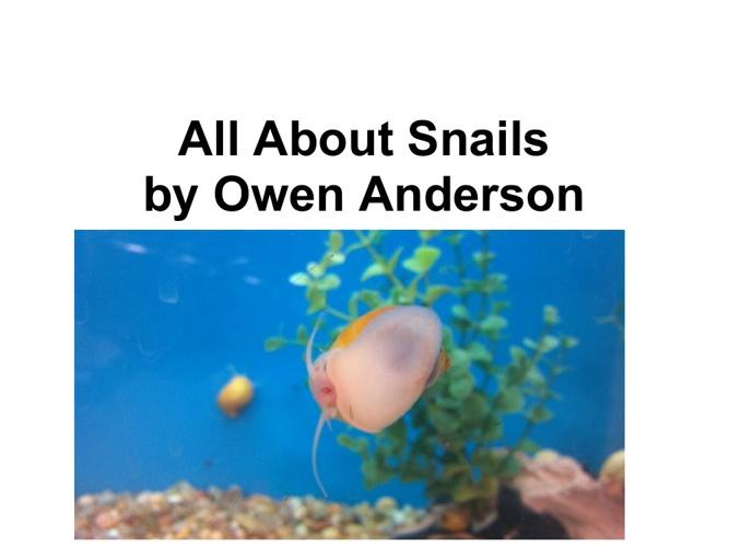 Owen's Snail Book