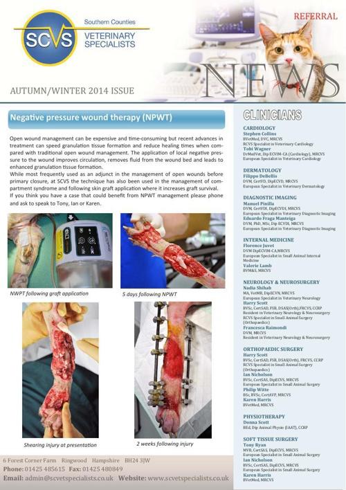 SCVS newsletter autumn2014 web