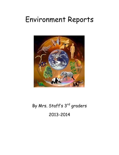 Environment Reports