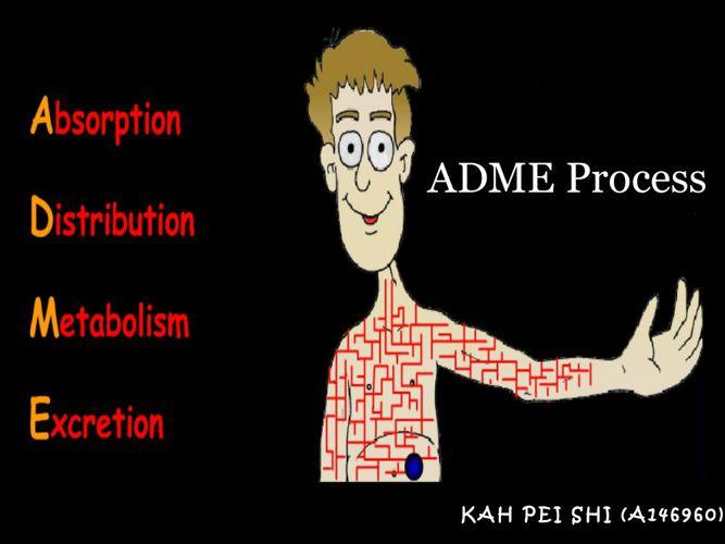 ADME Process