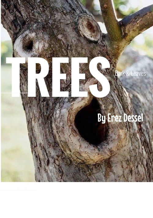 Erez's Guide to Most Trees