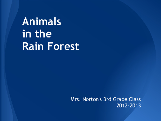 Mrs. Norton's Rain Forest Animals