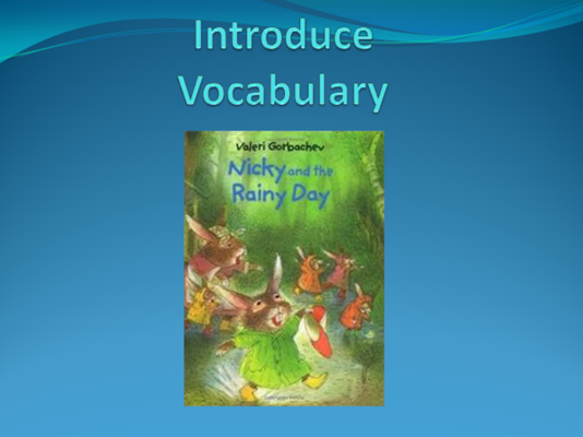 Vocabulary for Nicky and the Rainy Day