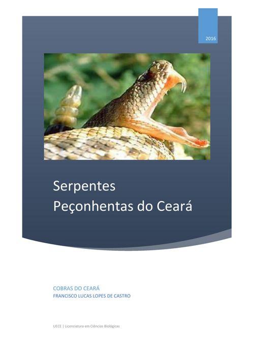 Bioação 3 - Ebook - Serpentes