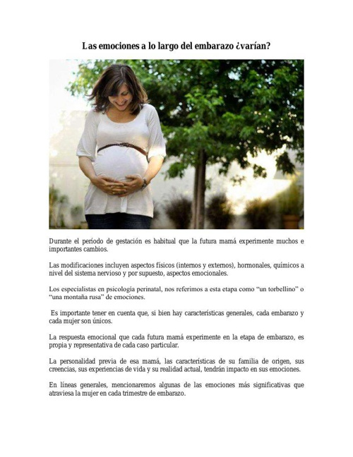 Articulo Las emociones a lo largo del embarazo