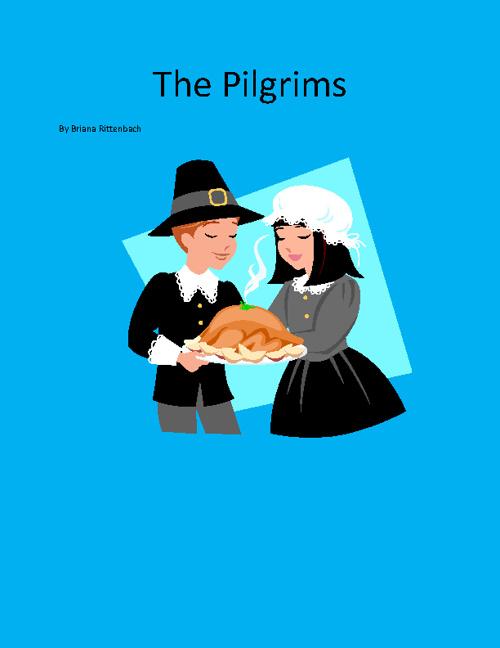 Briana's Pilgrim Book