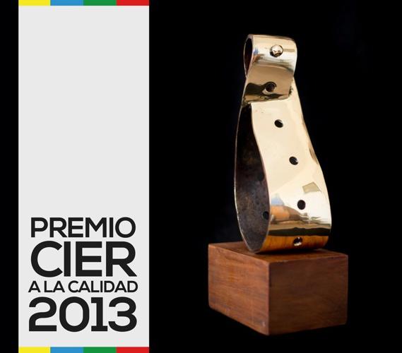 Premio Cier 2013