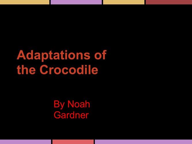 My Crocodile's adaptations