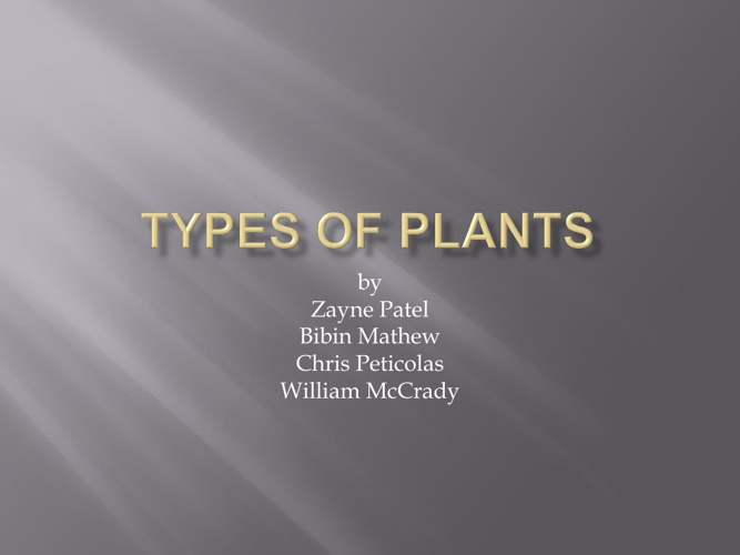 Types of a Plant