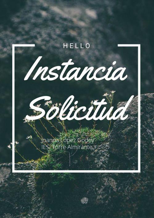 INSTANCIA SOLICITUD