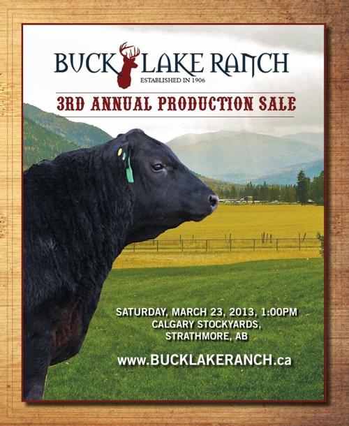 Buck Lake Ranch 2013 Sale Catalogue