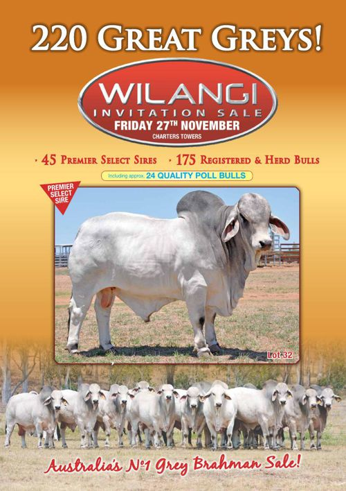 Wilangi IBS catalogue cover - web