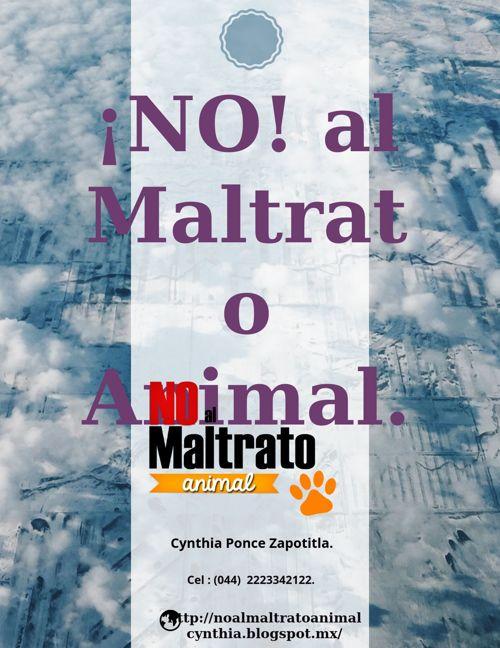 ¡No! al maltrato Animal.