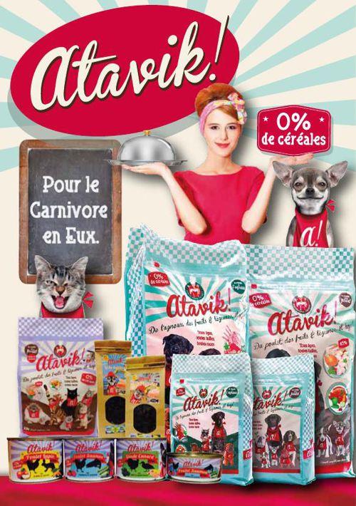 Atavik_brochure_