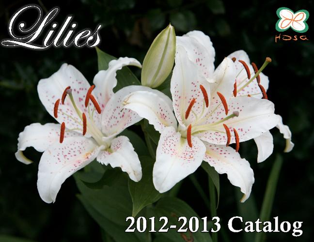 HOSA Lilies Catalog 2012-2013