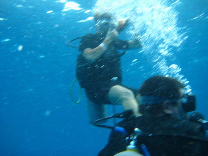 My First Scuba Dive