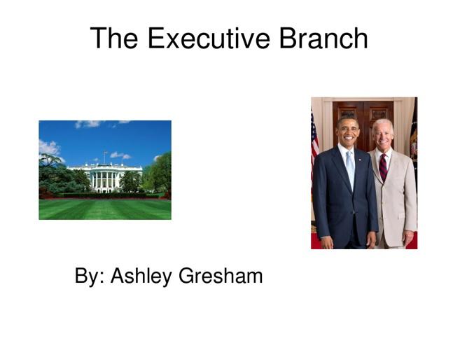 Copy of executive