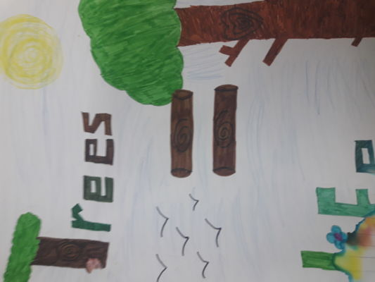 kids for trees - 1