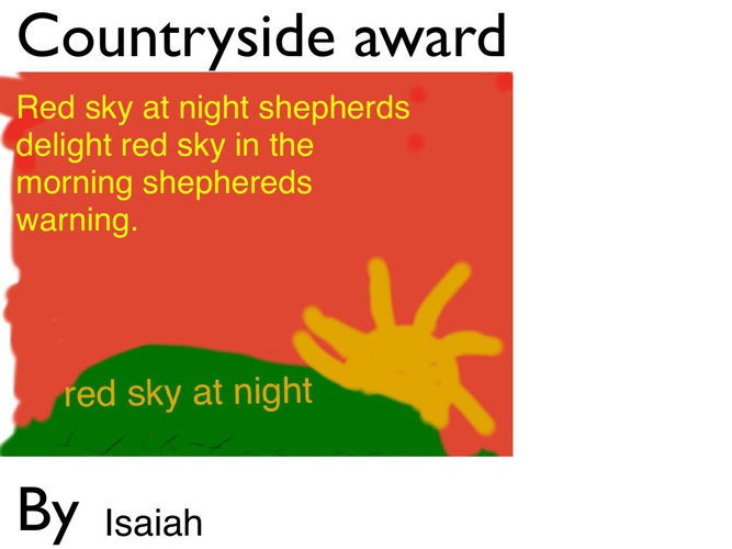 Countryside award and Playground games