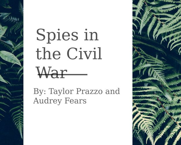 Spies in the Civil War