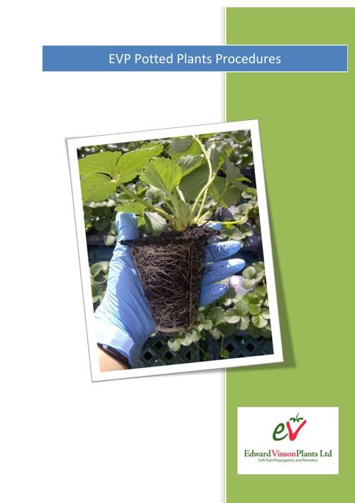 EVP Procedures - Potted Plants
