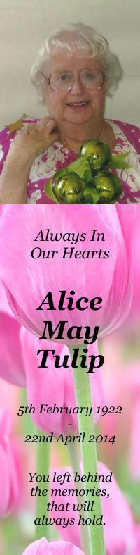 Bookmark for Alice Tulip