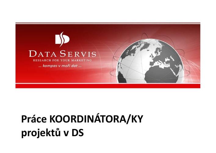 Práce koordinátor projektů v DS