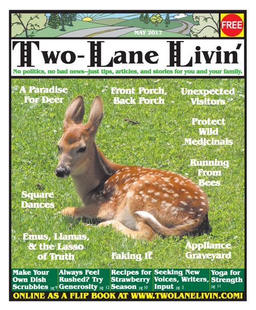 Two Lane Livin May 2017 issue