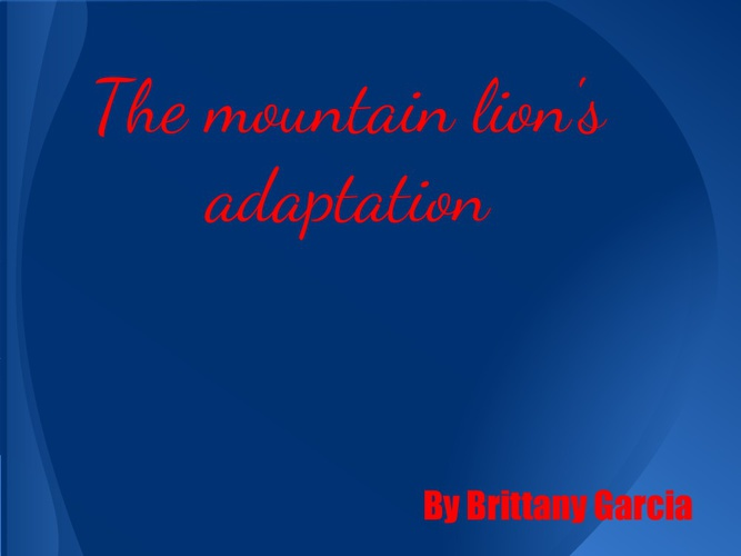 The mountain lion's adaptations