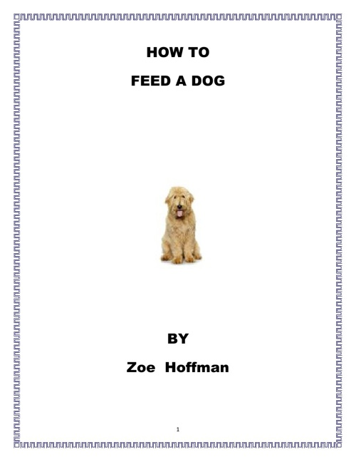 How to Feed a Dog by Zoe Hoffman