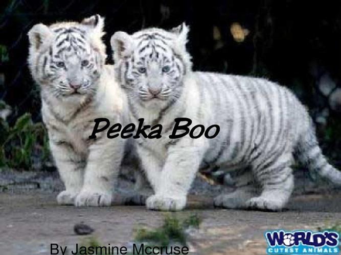 Peeka Boo