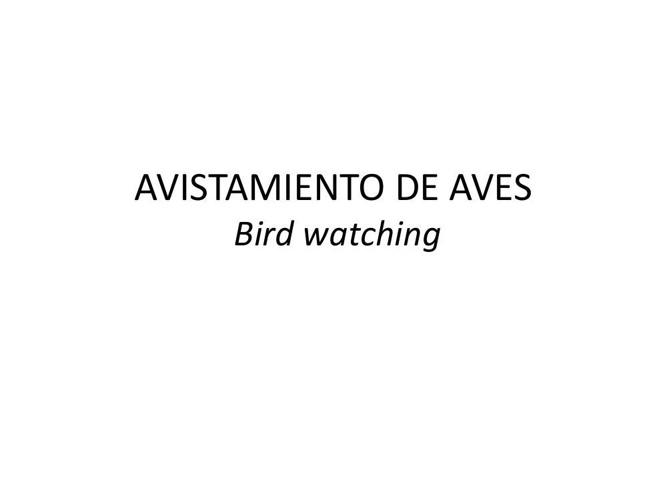 Guía aves - AVANCE