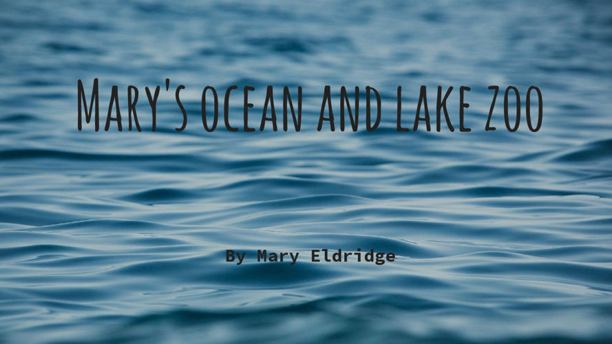 Marys Ocean and Lake Zoo