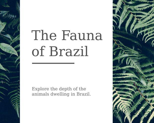 The Fauna of Brazil