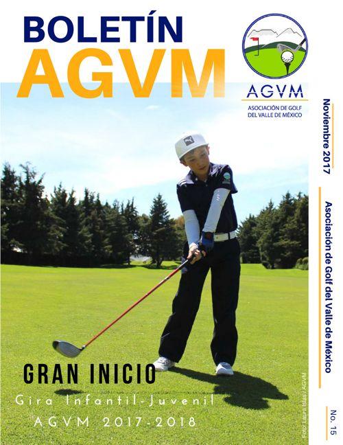 Boletín AGVM · No. 15 · Noviembre · 2017