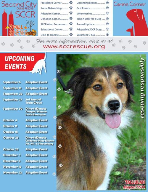 SCCR-Newsletter_Fall2014