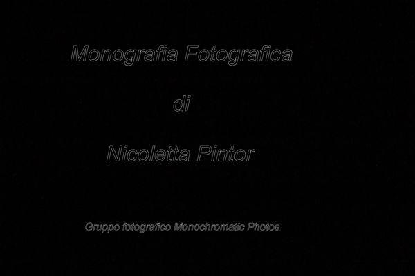 Nicoletta Pintor