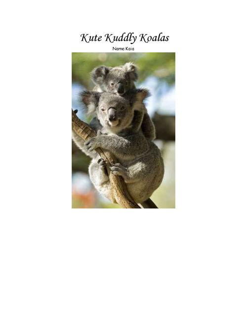 Koalas-KaiaMoore