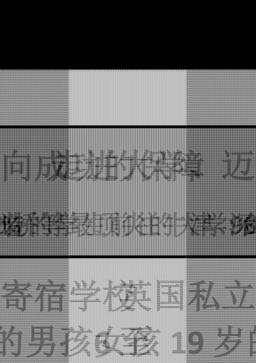 Chinese Mini Prospectus