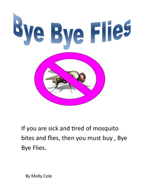 Bye Bye Flies