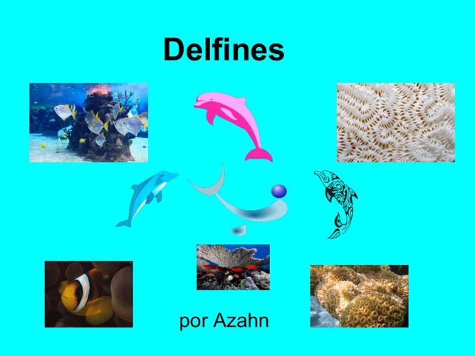 azahn delfines