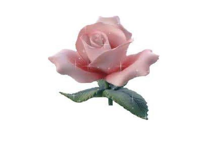 flower  e-book