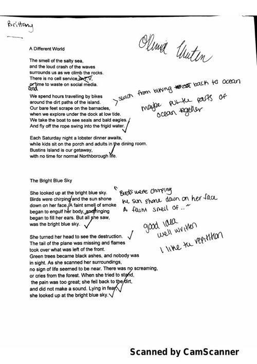Free Verse Poetry Rough Draft