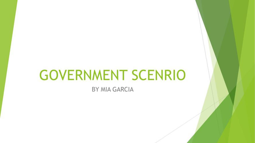 GOVERNMENT SCENRIO